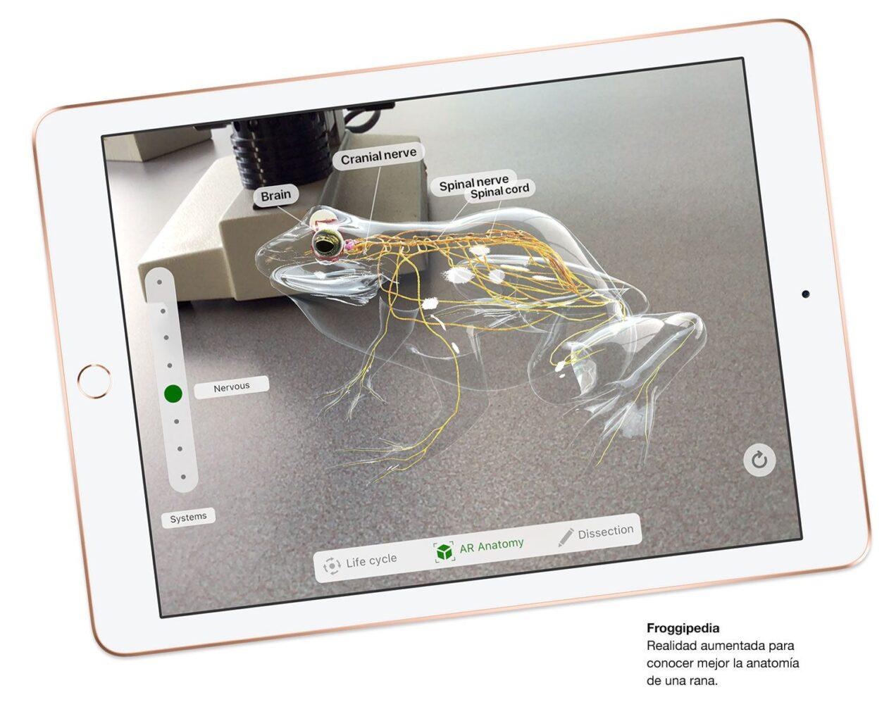 iPad - OneClick Argentina